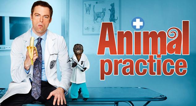 Llega 'Animal practice', nueva comedia.