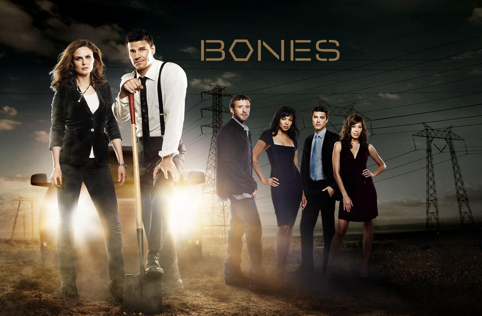 David Boreanaz y Emily Deschanel protagonizan la serie forense 'Bones'.